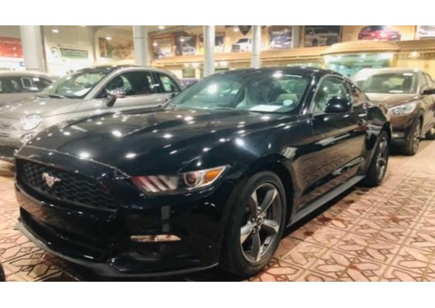 Ford Mustang 2017-FastBack (New)