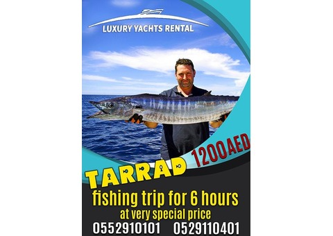Book Tarrad for low price long hours