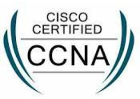 CCNA Training at Vision Institute , Call - 0509249945