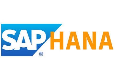 SAP HANA Online Classes @ Vision Institute. Call 0509249945