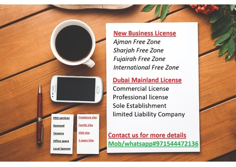 Business setup & PRO services in UAE