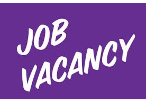 Female Cleaner required Urgently
