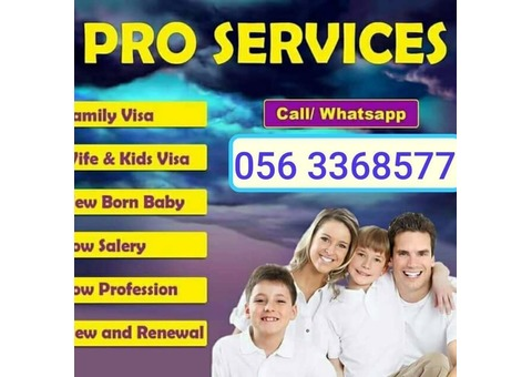FAMILY VISA, TENANCY CONTRACT, PRO SERVICES FOR COMPANIES, TRADE LICENSE Renewal..056 3368577