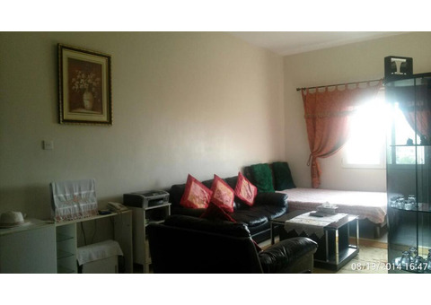 Fully Furnished 1 Br Flat by Owner in Discovery Gardens