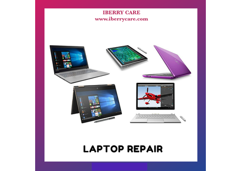 We repair laptops within the same day