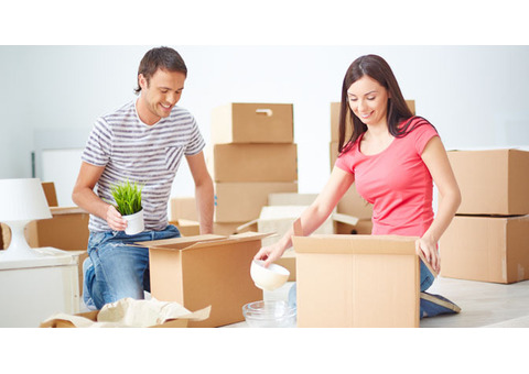 PROFESSIONAL MOVERS PACKERS 0552930121