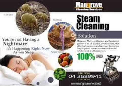curtain Steam cleaning and sofa steam clean