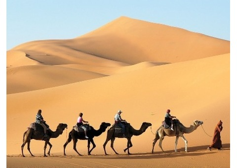 DESERT SAFARI PACKAGE TOUR