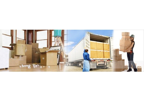 Kashan Mover and Packer 0525151294